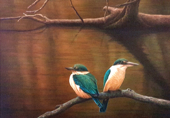 Hillier, Steve, Sacred Kingfishers