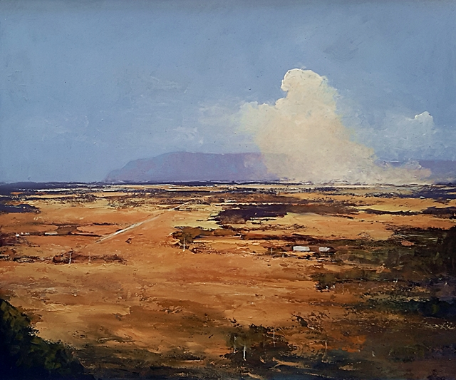 Brian Cook - Grassfire - Oil on board - 710 x 840 (2)