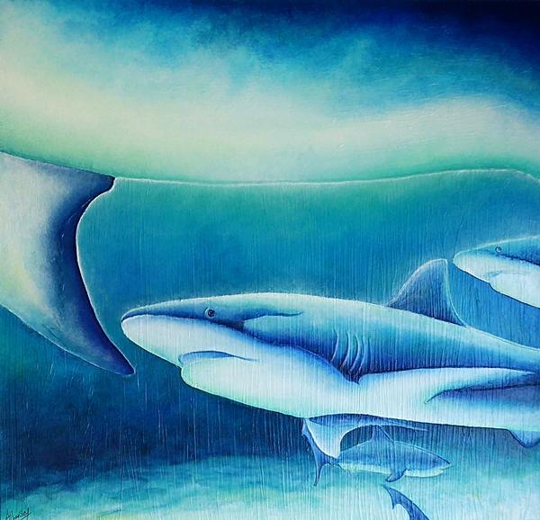 Reef Shark.web