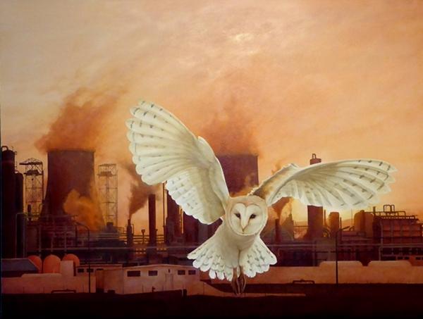 Holmes owl.web