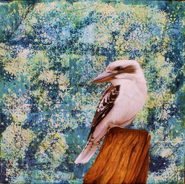 Kookaburra 2.web