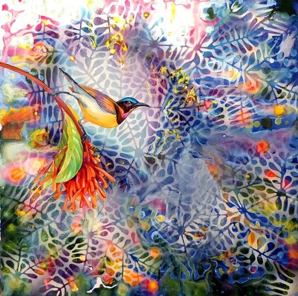 Sunbird vogueing web