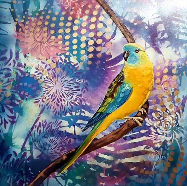 Parrot pinups #1 - Turquoise parrot.web