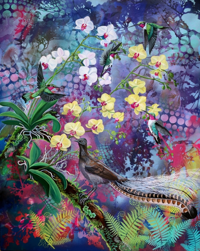 rainforest fantasy a web